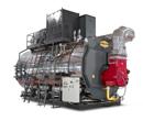 Firetube steam boilers